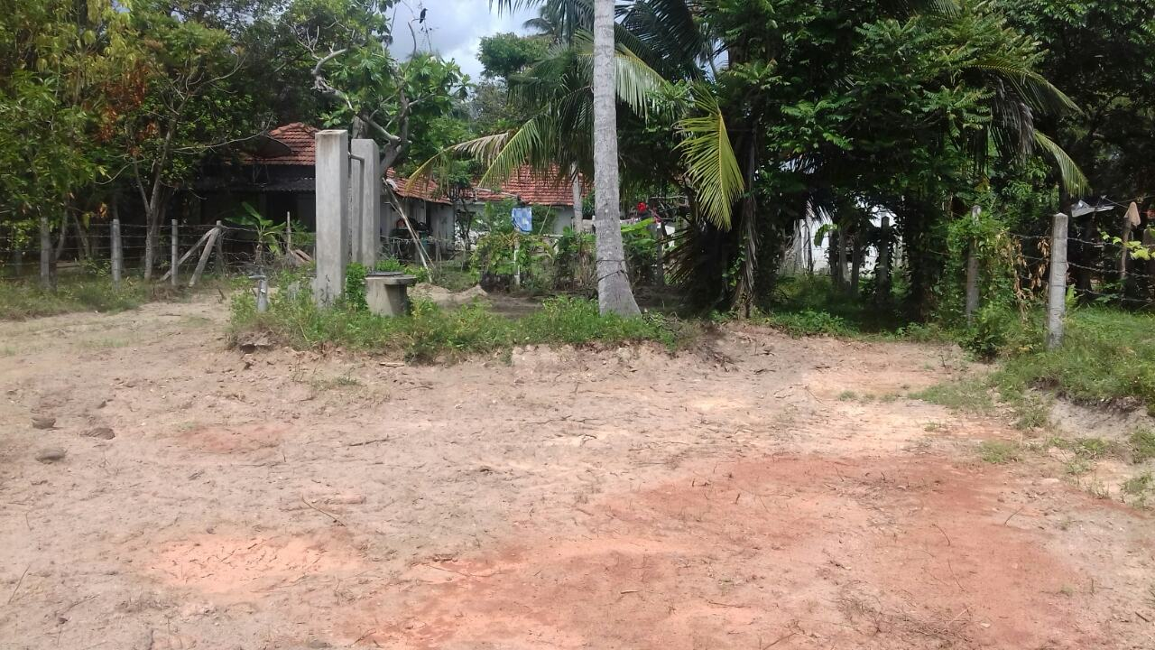 Land-For Sale-Wennappuwa-AA-AADK.php